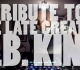 Rutina DJ Woody con B.B. King